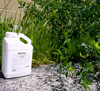 Bird Stop Protects Grass & Ornamental Plants