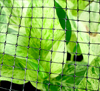 Structural netting protects gardens