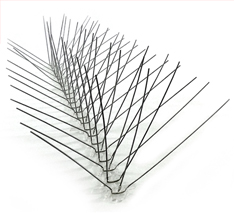 Stainless Steel Spikes