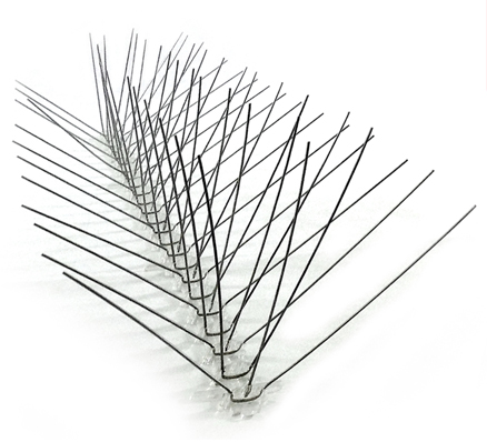 Stainless Steel Spikes Image