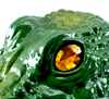 Gator Guard Eye Close-up