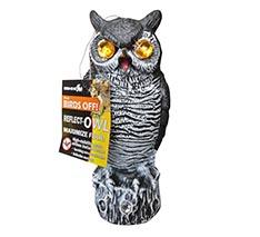 Reflect-Owl