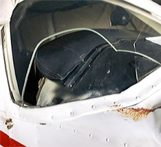 airplane bird strike damage