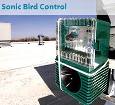 Sonic Bird Control