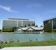 geese corporate property