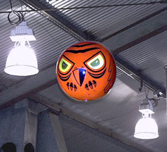Terror Eyes deters birds from entering warehouse