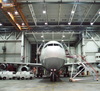 airplane hangar bird control