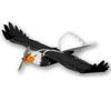 BirdXPeller Drone Image