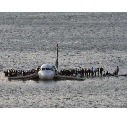 miracle-on-hudson-bird-strike