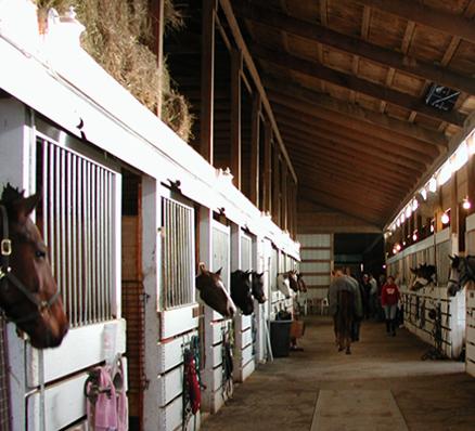 QuadBlaster stables