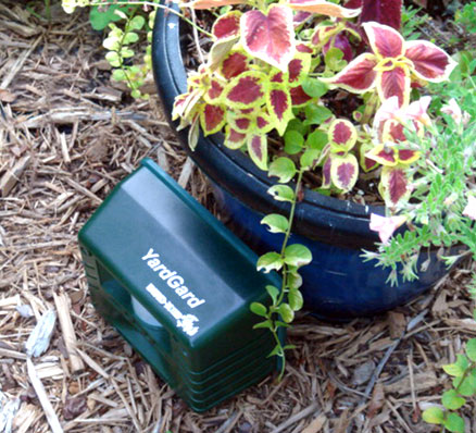 Yard Gard keeps pests away from plantings