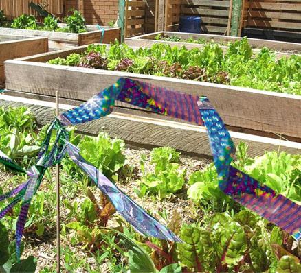 irri-tape-bird-tape-garden
