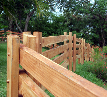 wood-fence-repel-woodpeckers
