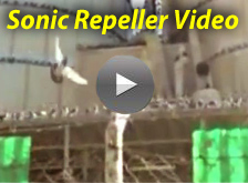 bird-x sonic repeller video